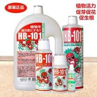 日本原裝新款植物活力素HB-101花卉多肉蘭花肥料月季通用營養液土【和平】