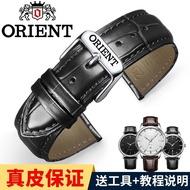 Orient/Oriental Double Lion Leather Watch Band Men's and Women's Mechanical Watch Double Lion Rectangular Bracelet Pin Buckle Accessories 20