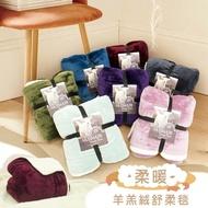 🎀 現貨 高品質 時尚法蘭絨羊羔絨素色雙面加厚暖暖毯 透氣保暖毯/羊羔絨毯+法蘭絨毯 加厚暖暖被純