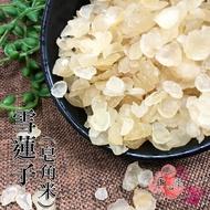 【正心堂】雪蓮子 (皂角米) 100克 皂角仁 皂角精 養生食材 天然植物膠質 養生食材 養顏美容