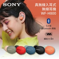SONY 索尼 WF-H800 真無線入耳式耳機