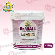 Pentend Dr.Wall Waterproof Anti-fungal Coating, Paint/Joint Compound & Putty Filler Repair Wall 4.5kg