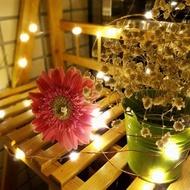 [Hare.D] 太陽能燈10米100燈 LED 10米 銅線燈串 防水燈串 聖誕燈 裝飾 燈條 造型燈飾 流星雨