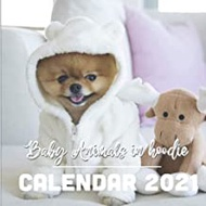 "Baby Animals in Hoodie: 2021 Wall Calendar - 8.5""x8.5"", 12 Months - Cute Animals with Hoodie"