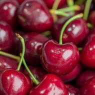 澳洲塔斯馬尼亞櫻桃 直徑28mm 1公斤禮盒包裝◆Tasmania Cherries◆限量◆低溫配送◆2020到貨開放搶購