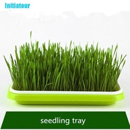 Initiatour- Nursery Pot Sprouter Tray Soil-Free Wheatgrass Growerling Sprout Tray