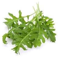 Arugula roquette wild rocket salad vegetable greens seeds
