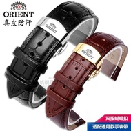 Oriental Double Lion Watch Strap Leather Leather Solid Butterfly Buckle Bracelet 14 | 16 | 18 | 19 | 20 | 22mm for men and women