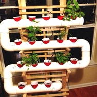 Paralon Hydroponic Package System Nft