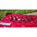 SED鴿子窩:A級精品 桌上型縫紉機高低壓腳 壓布腳 brother 車樂美 JUKI 大眾使用低壓腳 多種尺寸