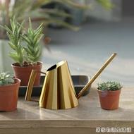 金色澆水壺長嘴小型不銹鋼家用養花園藝灑水器植物盆栽澆花壺北歐