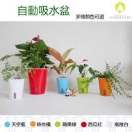 【Gardeners】自動吸水盆23cm-1入(花盆/吸水盆/懶人花盆)