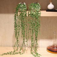 KTR45 String ไข่มุกดอกไม้ปลอม Vine ต้นไม้แขวน Succulent พืชน้ำตาคนรัก Faux Succulent พืชตกแต่งดอกไม้ประดิษฐ์ไม้อวบน้ำประดิษฐ์