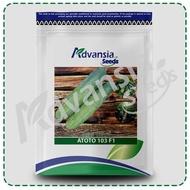 Biji benih timun Cucumber seed 青瓜黄瓜种子 ATOTO 生多多 103 F1 Timun 3800 seeds Advansia (100 g)