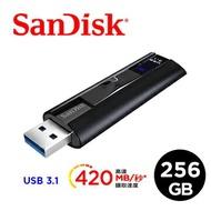 [富廉網] 【SanDisk】ExtremePRO CZ880 USB3.1 隨身碟 256G
