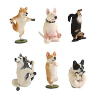 ANIMAL LIFE 狗狗瑜珈大師 盒玩 玩具反斗城