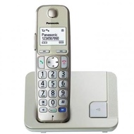 Panasonic Digital Cordless Phone KX-TGE210CXN