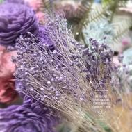 [晴冬小舖] 進口乾燥花材-西班牙(水染)木滿天星(薰衣草紫)乾燥花束 不凋花 花圈  2D4103