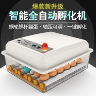 Second team incubator automatic small household water bed incubator peacock duck and goose household egg incubator