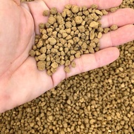ยกกระสอบ 10 กิโล ดินอะคาดามะ ดินญี่ปุ่น Akadama ส่วนผสมดินปลูกแคคตัส&ไม้อวบน้ำ