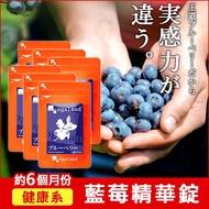 藍莓濃縮精華錠 ☆ 【約6個月份】B群添加 / 視覺維護 ▶ 歐格蘭德 ogaland