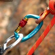 【現貨】專業攀岩主鎖登山扣快掛小D型主鎖戶外攀岩裝備用品安全鎖扣