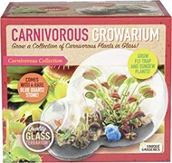 Unique Gardener Grow Your Own Venus Fly Trap - Complete Kids Terrarium Kit to Sprout Fly Trap and Sundew Plants - Includes Everything Needed for The Plants to Thrive
