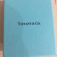 Tiffany&co鑰匙項鍊