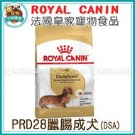 寵物FUN城市│法國皇家 PRD28 臘腸成犬【1.5kg、7.5kg】狗飼料 犬糧 Royal DSA