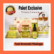 Temulawak Exclusive Package Original Natural Herbal