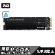 WD 黑標 SN750 250GB 500GB 1TB 【快速出貨】NVMe PCIe SSD 固態硬碟
