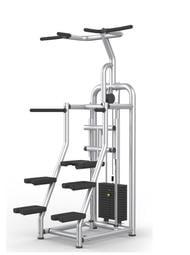 (有實機可看)單槓輔助機 單槓機 EASYCHIN DIP 引體 商用機台重訓器材 商用器材 轟菌 健身房 私人教練
