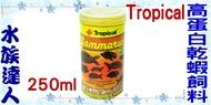 【水族達人】德比克Tropical《GAMMARUS高蛋白乾蝦飼料.250ml》