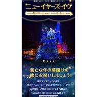 ✨有當選信✨ 🏰 2019-2020 東京迪士尼陸地/海洋 跨年門票 🌋