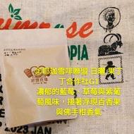 可刷卡 咖啡生豆 果丁丁 日曬 衣索比亞 耶加雪菲G1  耶加雪菲聯盟 沃卡 藍莓炸彈 波雷克堤現烘咖啡豆專賣