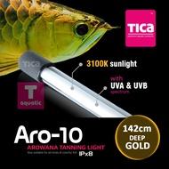Tica Aro-10 Deep Gold 3100k (142cm) arowana tanning light
