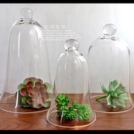 Apothecary Tall Glass Cloche Cover