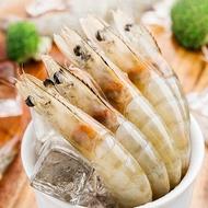 冷凍生白蝦 南美 50-60尾 宏都拉斯進口