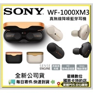 現貨可分期全新公司貨SONY WF-1000XM3 WF1000XM3 1000XM3 無線藍牙降噪真無線入耳式耳機