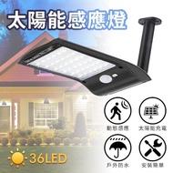 【台灣霓虹】太陽能感應36顆LED戶外壁燈(人體感應燈)