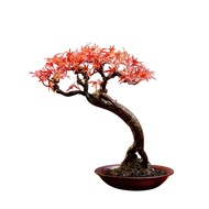 Simulation Bonsai New Chinese Red Maple Leaves Plant