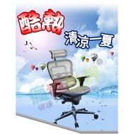 《瘋椅世界》Ergohuman-111 豪華版 人體工學椅 網椅 電競椅 電腦椅 採美製 透氣舒適 CS-MB 參考