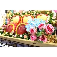 水果禮盒-日本蘋果(特選等級)