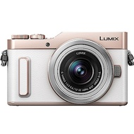 PANASONIC LUMIX DC-GF10 12-32mm 變焦鏡 (公司貨)