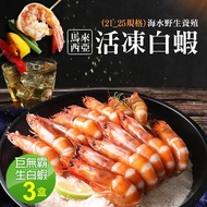 【優鮮配】巨無霸馬來海水養殖活凍21/25生白蝦3盒(約600g/15±3尾)