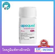 Apoquel 16 mg ภูมิแพ้ผิวหนัง บรรเทาอาการคัน สุนัข [ 1 กระปุก / 100 เม็ด ]