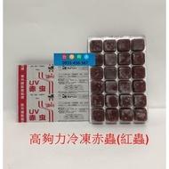台中阿永-日本(Hikari)高夠力-UV冷凍無菌赤蟲(紅蟲)24小塊/片(100g)**需冷凍寄送**