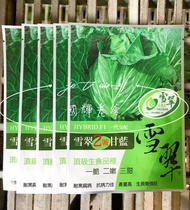 【國輝老爹】雪翠2號高麗菜種子1680元/包.原封包裝一代交配改良品種甘藍高麗菜種子.脆嫩甜產量高生長勢強旺