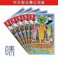 全新現貨 switch 家庭訓練機 含腿部固定帶 中文版 Nuntendo Switch 遊戲片