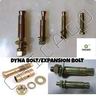 DYNA BOLT /EXPANSION BOLT 1/4 *50MM (12PCS)